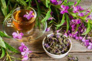 Преимущества сушеного Иван-чая